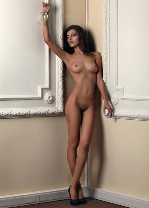 femme nue lingerie 068